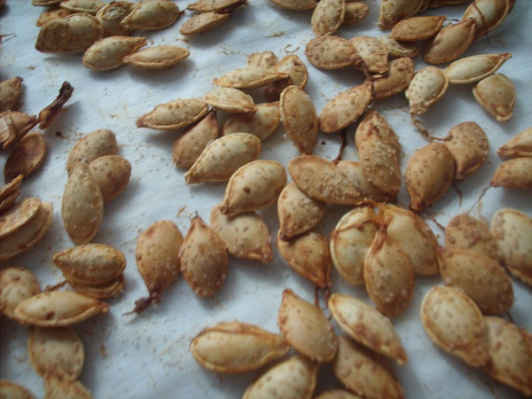 Oven-Roasted Acorn Squash Seeds