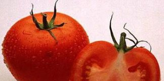 Tomato Troubleshooter | Natural Skincare Recipe- My Halal Kitchen