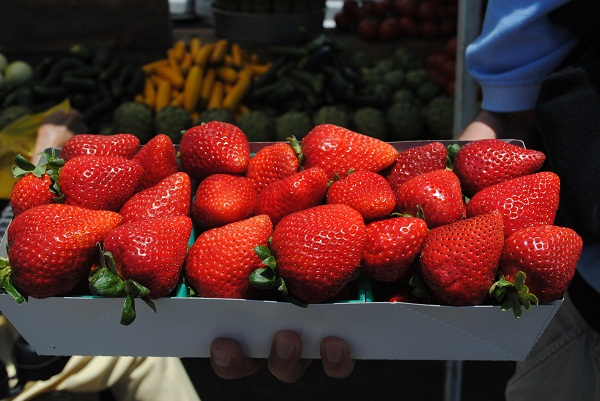 Two San Diego Area Farmers Markets and Vintage Shops Nearby