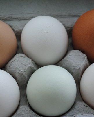 Hen Eggs   My Halal Kitchen Pantry