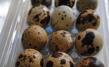 Quail Eggs | My Halal Kitchen Pantry
