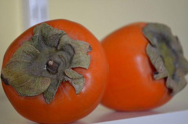 What Exactly is a Persimmon?