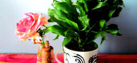 Take Away the Winter Blues with These Café Planters