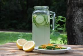 Cucumber Spritzer | My Halal Kitchen
