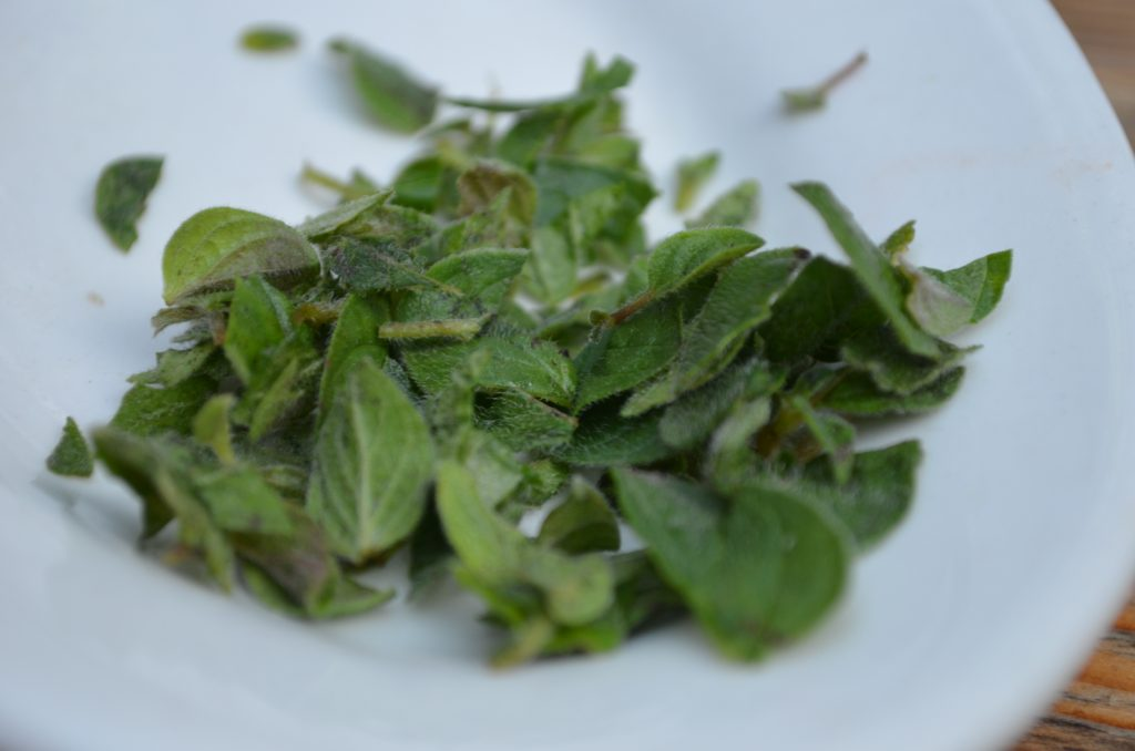 Fresh Cut Oregano
