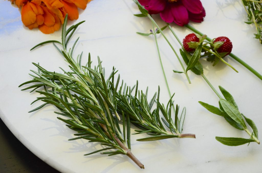 Rosemary for Cheese Plate