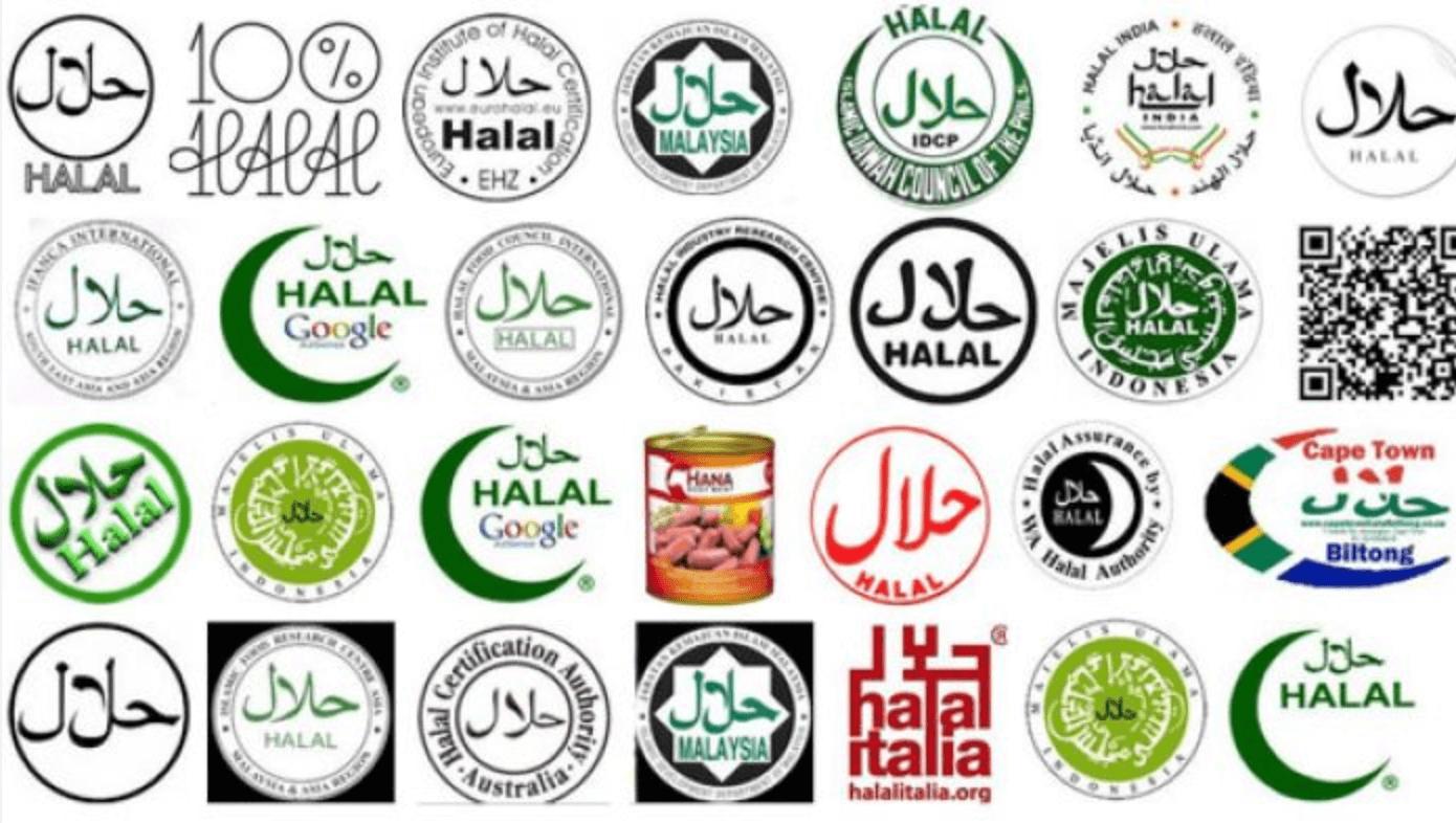 """Image result for halal world logo"""""""