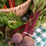 Fresh Beets at the Green City Market, Chicago