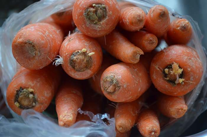 carrots in bag