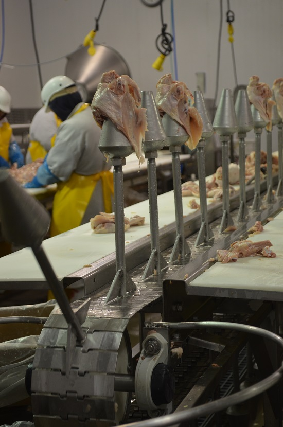A Fascinating Glimpse at the Crescent Foods Plant Tour - My