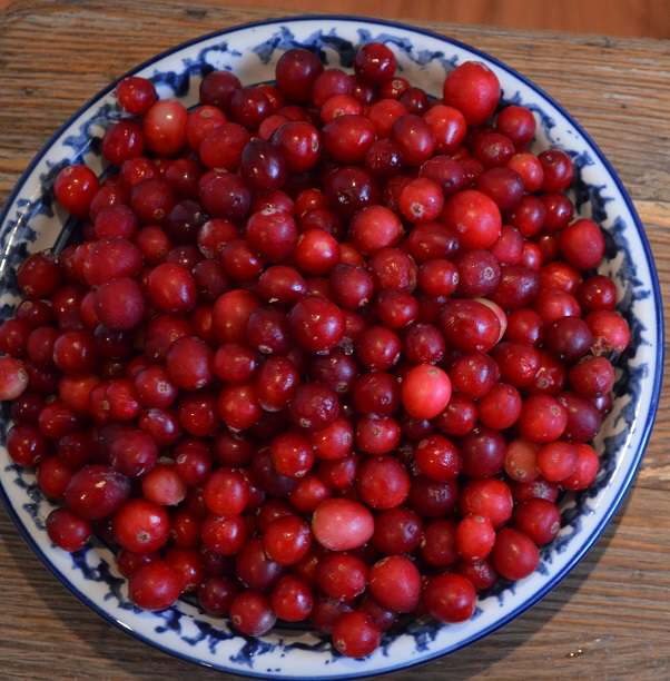 cranberries from top