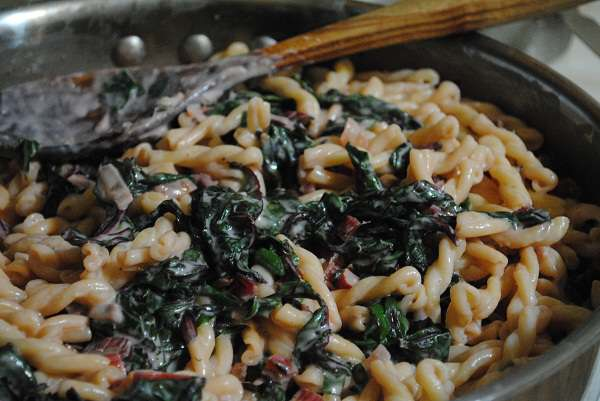 creamy pasta with swiss chard