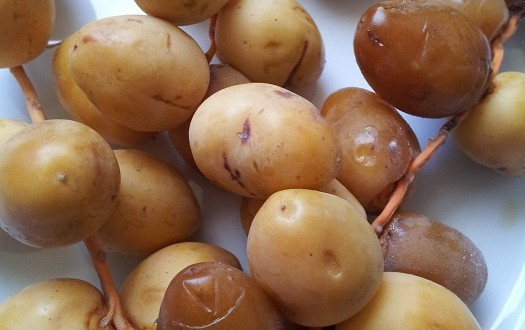 fresh barhi dates