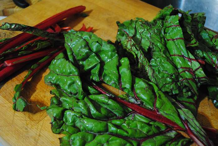 swiss chard cutting