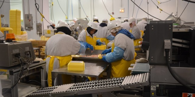 workers on production line